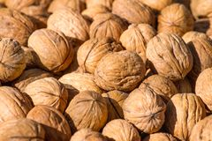 Dry whole walnuts Royalty Free Stock Photos