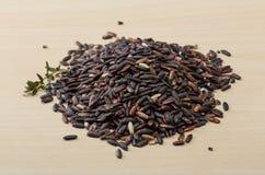 Dry wild rice mix Stock Photography