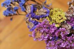 Dry wildflowers Royalty Free Stock Photo
