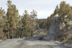 Dry Winding Gravel Road With Juniper Trees Stock Photo