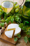 Dry wine and camembert Stock Photography