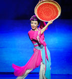 Dry wolfberry-Hui ballet moon over Helan Stock Photos