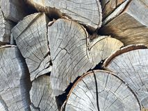 Dry wood Royalty Free Stock Photos