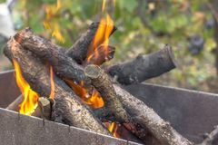 Dry wood in the fire. Flame campfire in the forest. Autumn leisure near the grill. The crackling of logs in the fire. Fire in the open air. Camping by the fire stock photo