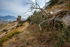 Dry wood lies near the fortress wall in the town of Sudak. Crimean coast. Mountains in the background. Russia royalty free stock photos