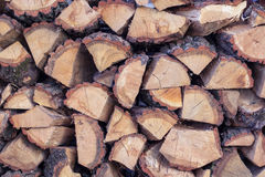 Dry wooden logs set-up in cord natural background Stock Image