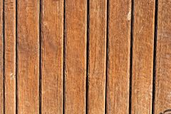 Dry Wooden Texture Stock Photo