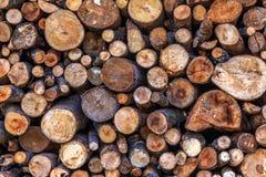Dry woodpile Royalty Free Stock Photos
