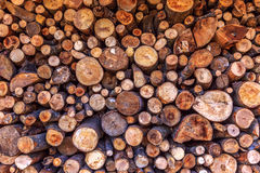 Dry woodpile Stock Images