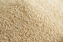 Dry Yeast Royalty Free Stock Photo