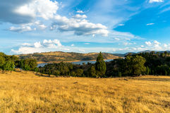 Dry yellow grass field in drought with blue lake in a distance Stock Images