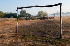 Dry yellow grass in the meadow. Foggy weather. Morning landscape with firewood behind. Background.  stock photography