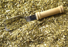 Dry yerba mate. Leaves, traditional drink of Argentina Stock Image