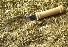 Dry yerba mate Stock Image
