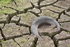 Dry zone. Small lake drying out in the summer Stock Photography