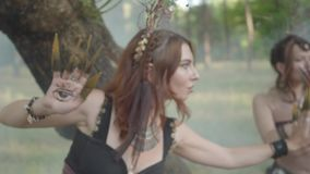 Dryades attrayantes ou fées de forêt sortant par derrière le tronc d'arbre et dansant dans de beaux costumes en nuage de banque de vidéos