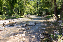 Dryanovo river in the mountains of Bulgaria Royalty Free Stock Image