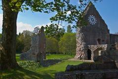 Dryburgh Abbey Arkivfoton