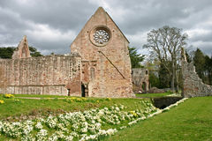 Dryburgh Abbey Stock Image