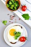 Dryck orange Juice Sandwich för kopp för morgonkaffe vit med smakliga Fried Egg Royaltyfri Foto