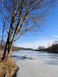 Dryden Lake i den dolda sjön för Tompkins County vinteris Royaltyfri Fotografi