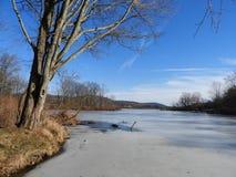 Dryden Lake täckte i is på vinterdag i NYS Arkivfoto