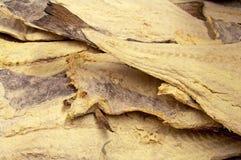 Dryed gesalzene Kabeljaus Lizenzfreies Stockfoto