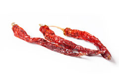 Dryed red chilli peppers Stock Image