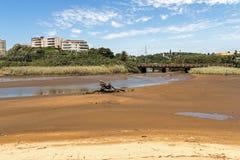 Dryftowa Drewniana bela przy laguną Przeciw budynkom mieszkalnym Zdjęcie Royalty Free