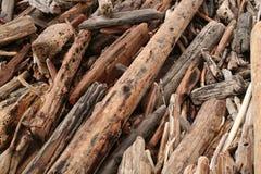 dryftowy drewna Obrazy Stock