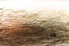 Dryftowy drewno od Ontario Zdjęcia Stock