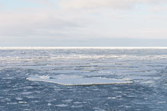Dryftowy lód Zdjęcia Royalty Free