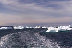 Dryftowy lód arktyczny Greenland Obrazy Royalty Free