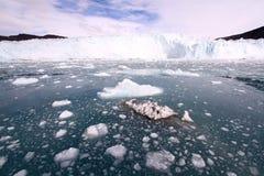 Dryftowy lód arktyczny Greenland Zdjęcie Stock