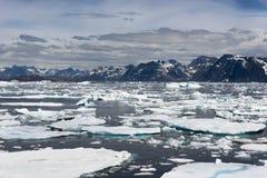 Dryftowy lód, linia brzegowa, Greenland Zdjęcia Royalty Free