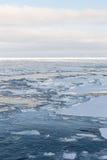 Dryftowy lód, morze Okhotsk Fotografia Stock