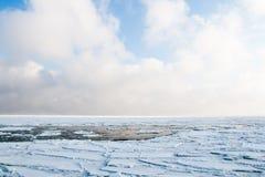 Dryftowy lód unosi się przy morzem w zimie Fotografia Stock