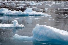 Drygalskifjord, miniijsbergen die op haven drijven stock afbeeldingen