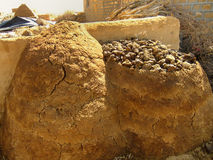 Drying animal dung near traditional house in a small village, Th Stock Images