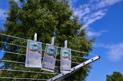 Drying bank notes Royalty Free Stock Image