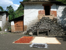 Drying chili, corn and other in small village in Nepal Stock Image