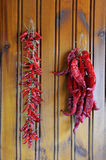 Drying chili peppers Royalty Free Stock Photography