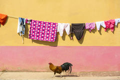 Drying clothes with colored background and chicken, Guatape, Colombia Stock Image