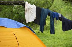Drying clothes on tree limb Royalty Free Stock Photo