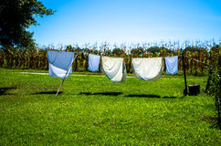 Drying clothes in washing line. White drying clothes in washing line in the countryside royalty free stock photos