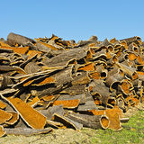Drying of Corkwood. For Making Wine Corks in Portugal Stock Photography
