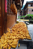 Drying corns at farmhouse, China Royalty Free Stock Photo