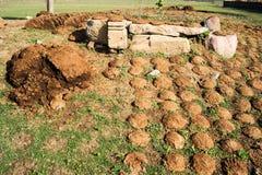 Drying cow dung cakes at Khajuraho Stock Photos