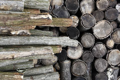 Drying firewood Stock Photos