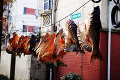 Drying fish Stock Photo